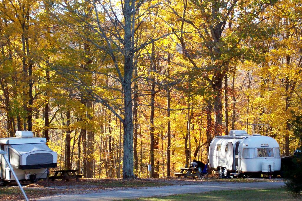 Fall Camping Enjoy Natures Beauty Pine Acres Rv